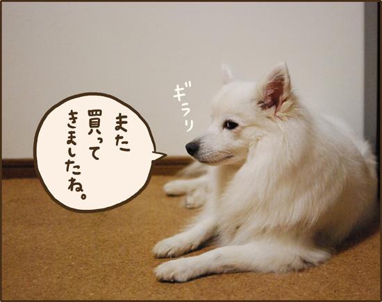 d0212419_20125990.jpg