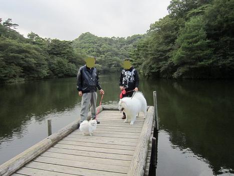 ターボくんと六甲山へ_b0177436_22562991.jpg