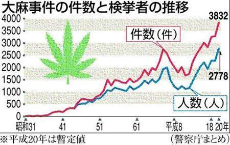 大麻収穫の季節となりました。_b0221143_2521259.jpg