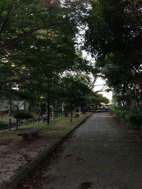 散歩に行こう_b0102247_18161844.jpg