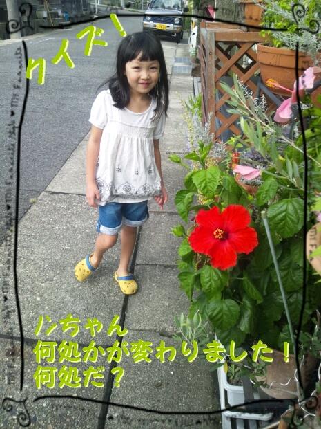 b0253057_1471867.jpg