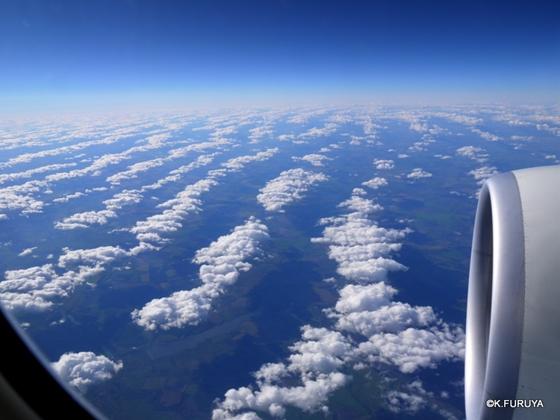 トルコ旅行記 1   トルコ航空は快適♪_a0092659_28745.jpg