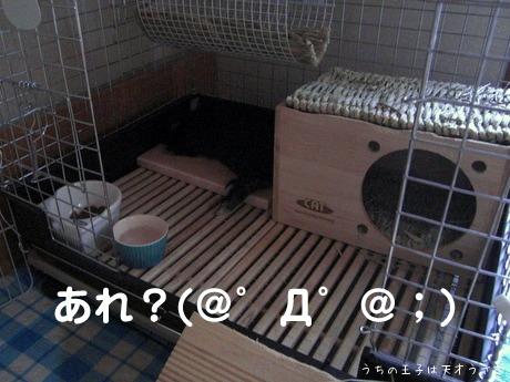 d0247281_1521577.jpg