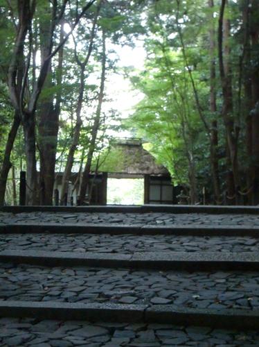 京都旅行_e0240310_1416159.png