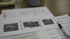 f0180812_1134137.jpg