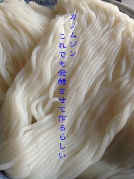 d0042827_1543354.jpg