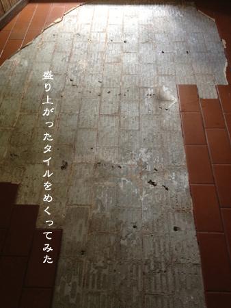 d0042827_15454941.jpg