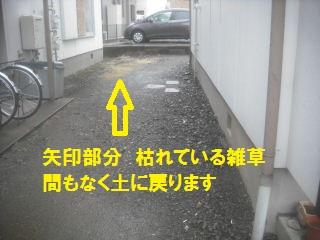 f0031037_2174362.jpg