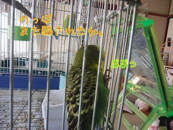 f0196665_1723219.jpg