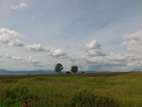 美しき北海道の風景3_b0106766_2139081.jpg