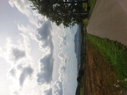 美しき北海道の風景4_b0106766_21532552.jpg