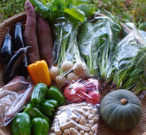今週の野菜セット(9/25~9/29着)_c0110869_21472328.jpg
