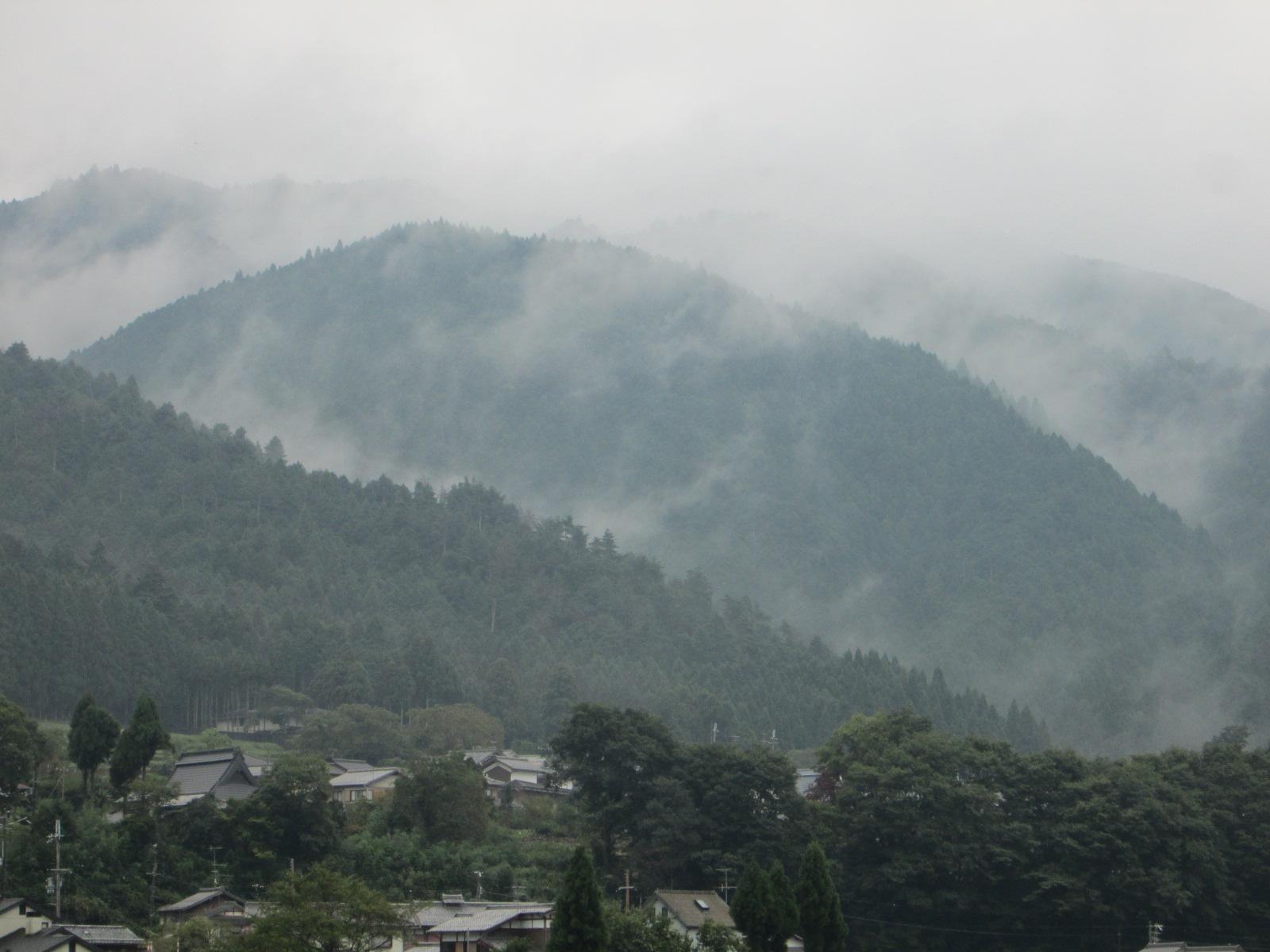 帰国 美しい日本_c0100195_534243.jpg