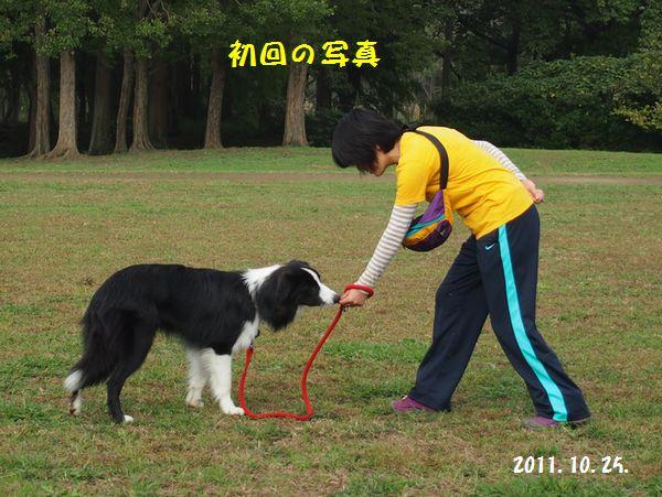 d0224111_20103526.jpg