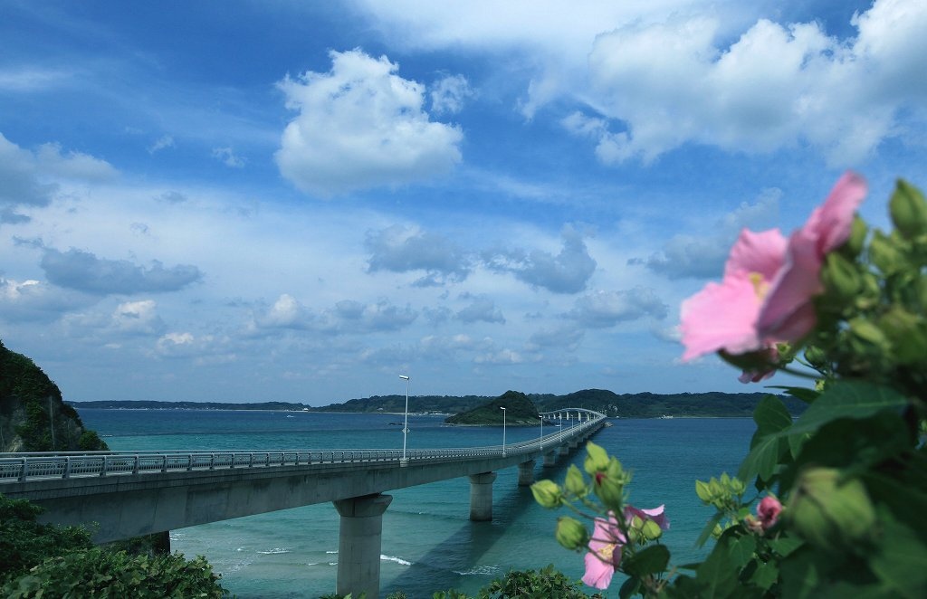 角島_d0074828_22231980.jpg