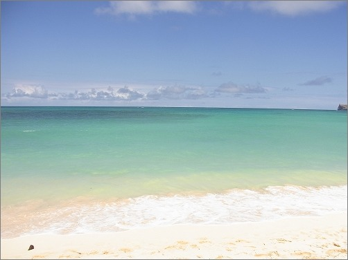 【 2012夏 ハワイ旅行記 その1 】_c0199166_15363527.jpg