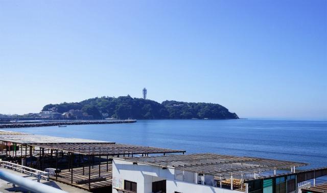 新江ノ島水族館 テレビのドラマ「流れ星」のロケ地_b0145398_0591433.jpg