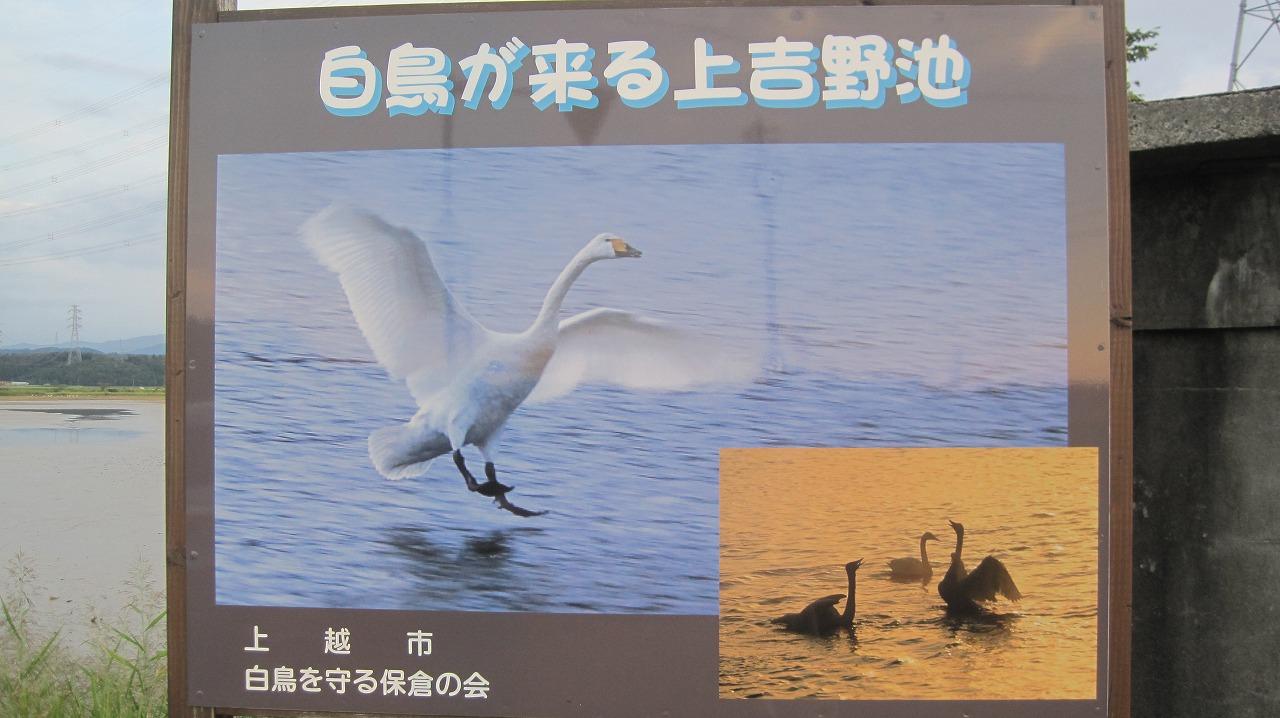 b0163804_1917278.jpg