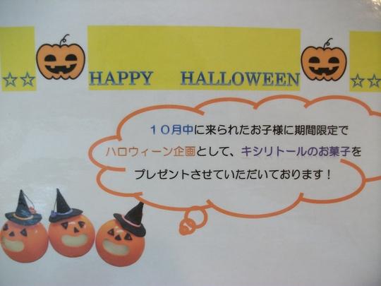 もうすぐ10月ですね☆_a0112220_1647364.jpg