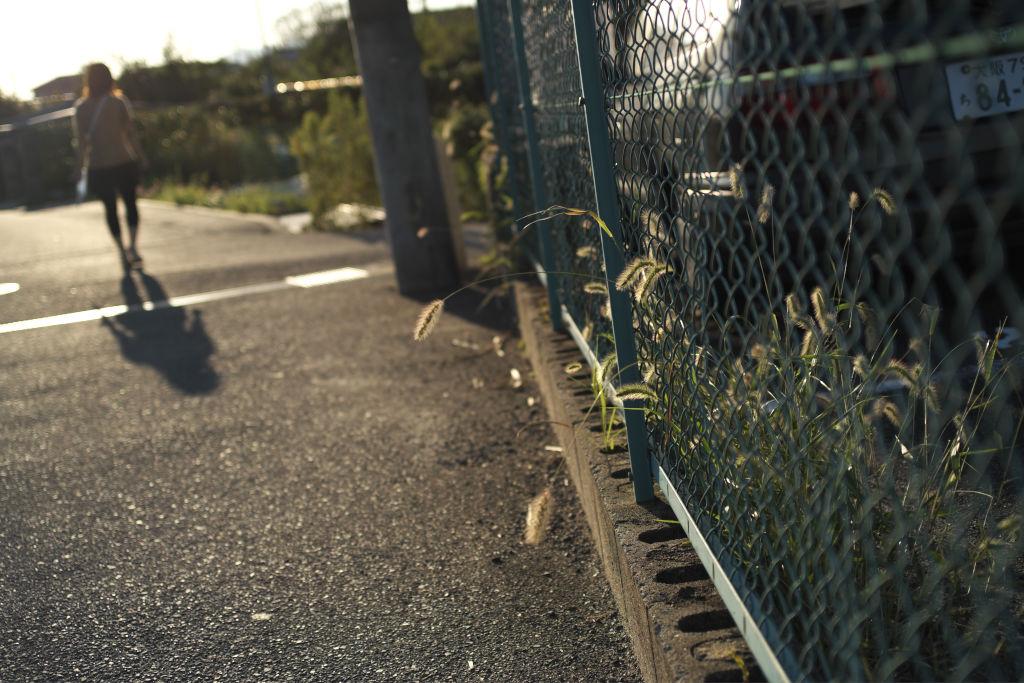 明るいうちは暑いけど、朝晩は寒い_f0167977_1882795.jpg