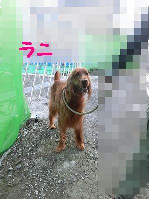 e0222588_17384546.jpg