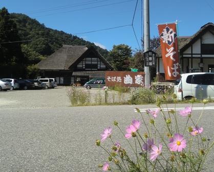 秋の花を撮ってきました。_f0227395_13462552.jpg