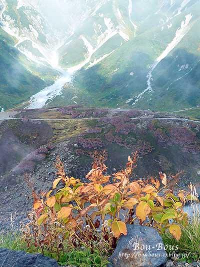 立山黒部アルペンルートその4_d0128697_114243.jpg