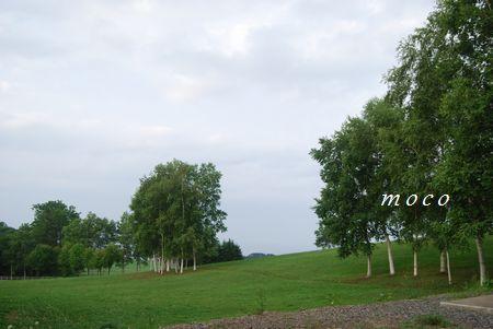 f0193597_22272724.jpg