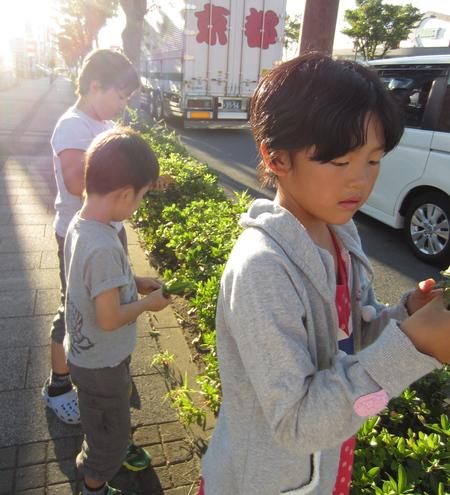 落ち葉を描こう〜松井山手教室☆_f0215199_22573374.jpg