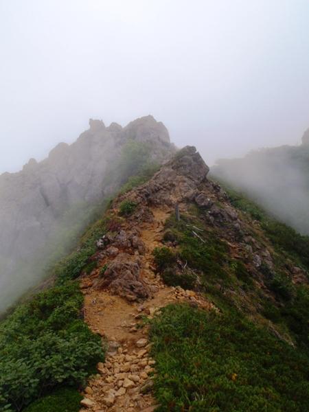 八ヶ岳キレット縦走①-阿弥陀岳へ_c0177814_18393046.jpg