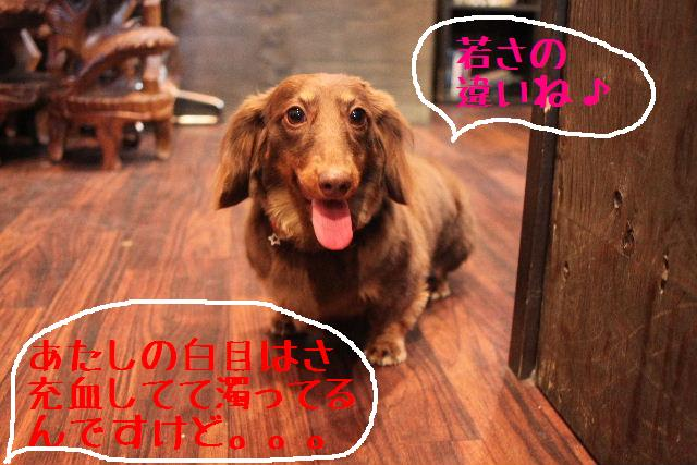 調子いいねぇ~!!_b0130018_22205926.jpg