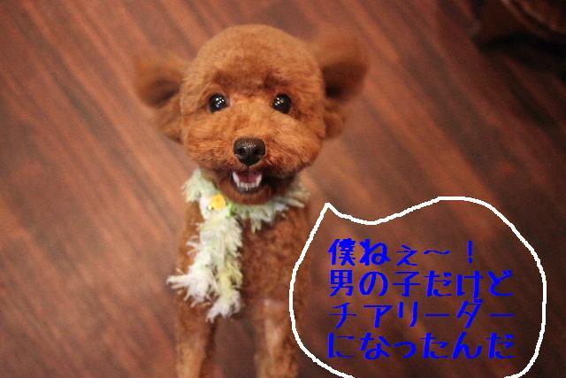 調子いいねぇ~!!_b0130018_2226524.jpg