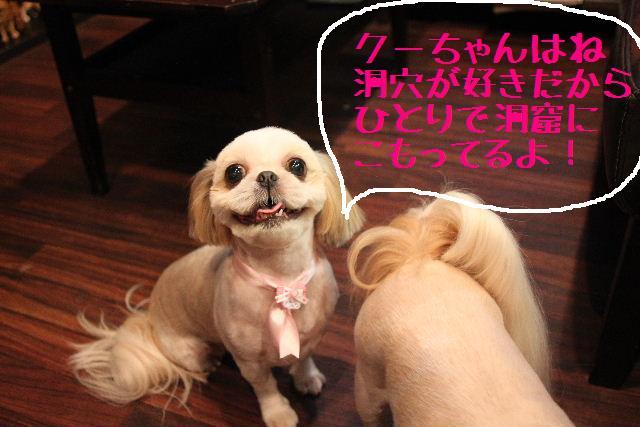 調子いいねぇ~!!_b0130018_22315368.jpg
