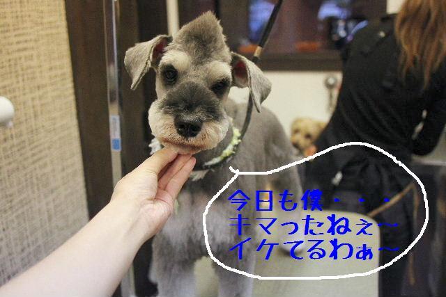 調子いいねぇ~!!_b0130018_22361369.jpg