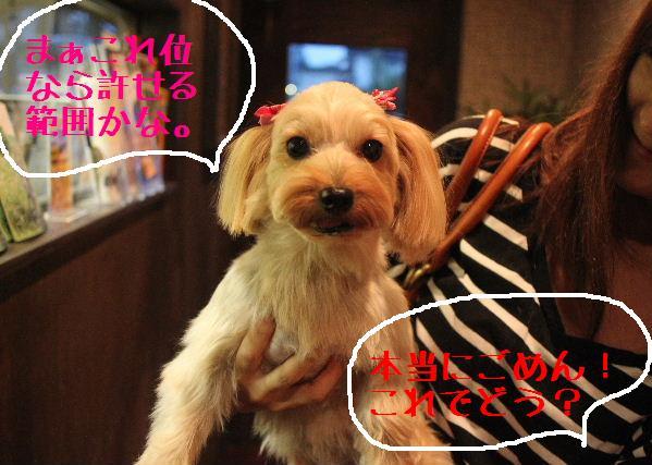 調子いいねぇ~!!_b0130018_22404781.jpg