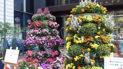 街で見かけた・・・flower tree_a0214263_23545086.jpg