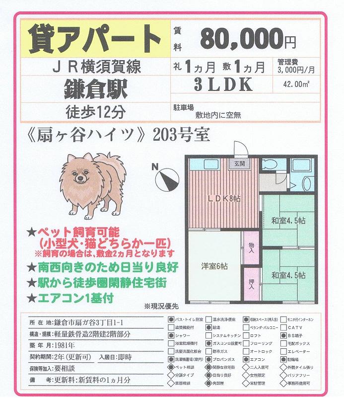 8.0万円 鎌倉市扇ヶ谷 アパート ペット相談_c0200594_1652843.jpg