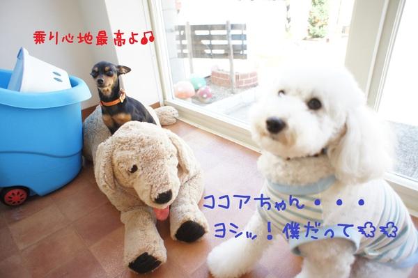 d0220513_16443635.jpg