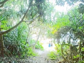 ユーミンのSUPER WOMAN 「軍地彩弓と歩く沖縄」<1>_a0116217_172160.jpg