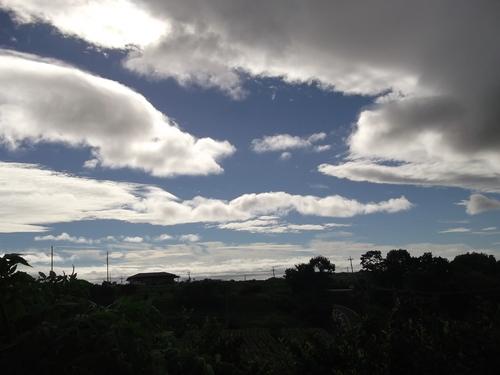 台風対策.....トマトのビニールテントを撤去_b0137932_1555857.jpg