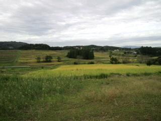 花巻の田園風景_d0027486_13575875.jpg