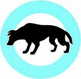 世界狂犬病デー \'12_f0053757_6345653.jpg