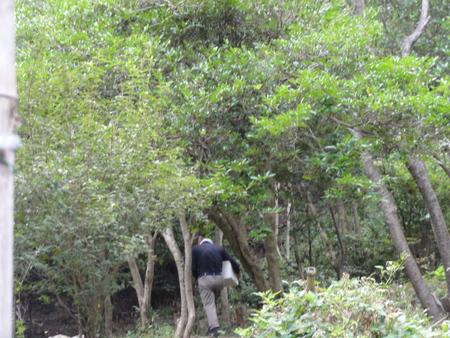 南海ハイキング⇒孝子の森を通る  by (TATE-misaki)_c0108460_18424178.jpg