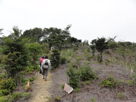 南海ハイキング⇒孝子の森を通る  by (TATE-misaki)_c0108460_19514366.jpg