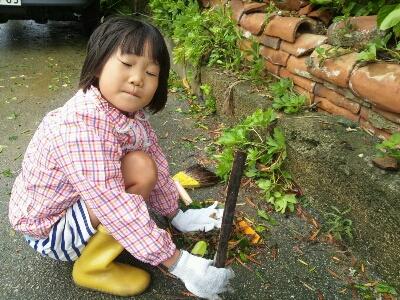 台風後_e0131462_12552795.jpg