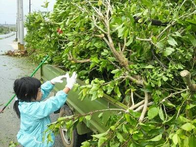 台風後_e0131462_12561392.jpg