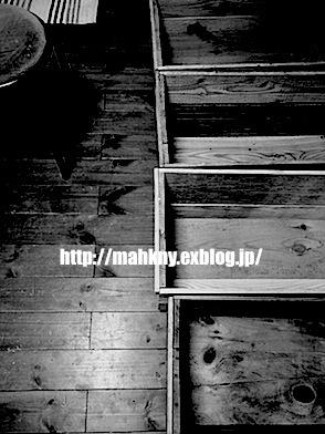 e0198587_1952797.jpg