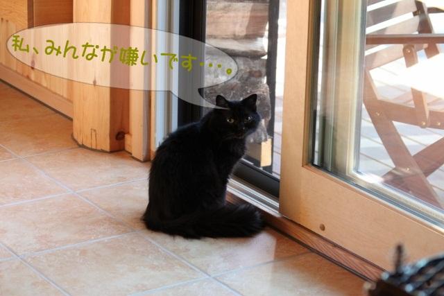 c0117597_10425034.jpg