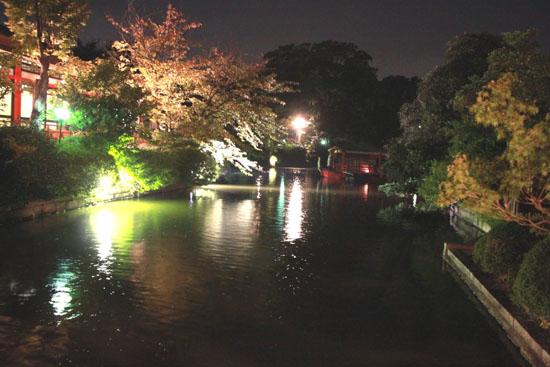 神泉苑 観月会_e0048413_16561034.jpg