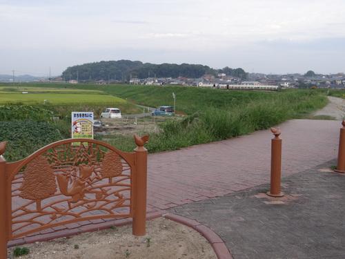 台風前のお散歩_d0254540_9532464.jpg